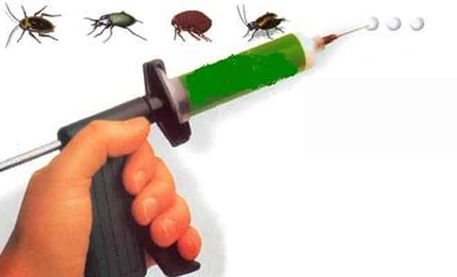Jel Böcek İlaçlama