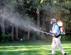 Kadıköy böcek ilaçlama