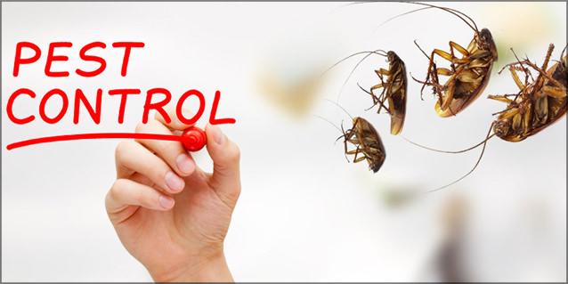 Pest Control Nedir